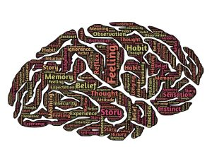 Side image of a brain with various text e.g. feeling, thought, memory, belief