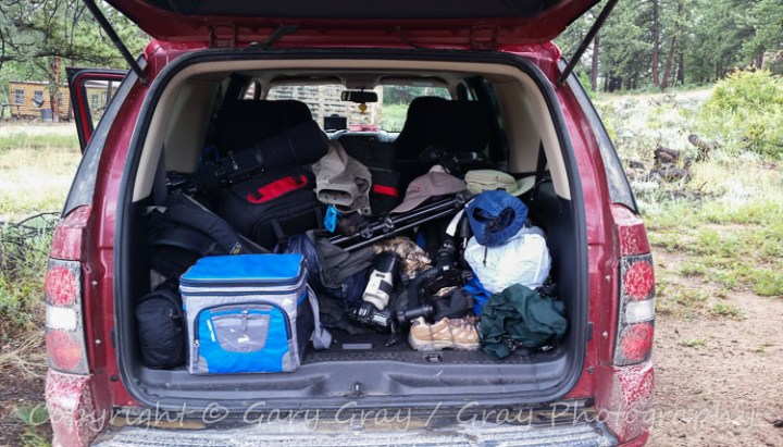 Wildlife Photography Pointers for Working From Your Car