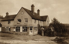 The 'Blue Jug' tea rooms Bramshott Chase, formerly the post office it remained popular with travellers until the 1960s. A small blue jug could be purchased here as a souvenir