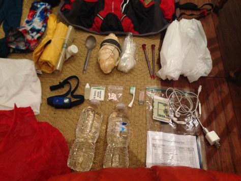 Salomon Skin Pro 10+3 review, Backpacking, Trail Running, Ultramarathon, Grayson Cobb