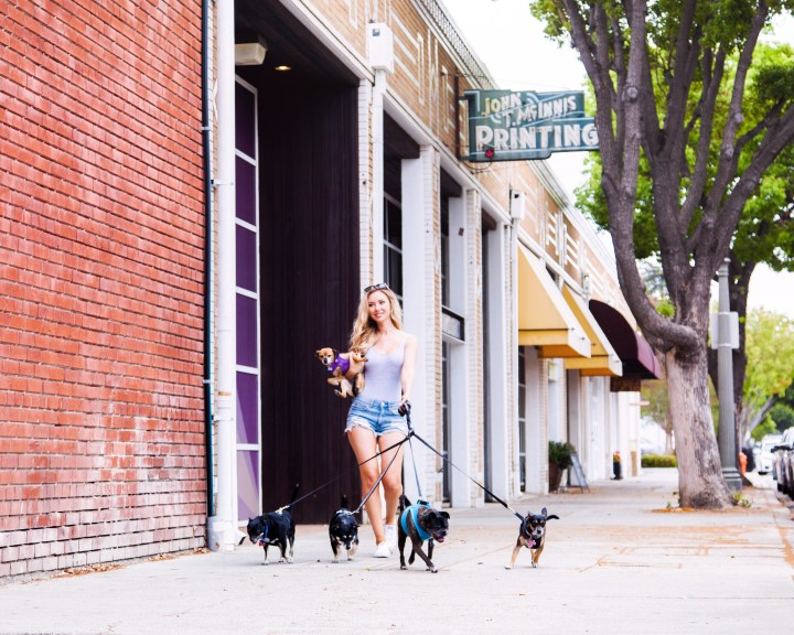 Picture of Tiffany Gray walking her five dogs