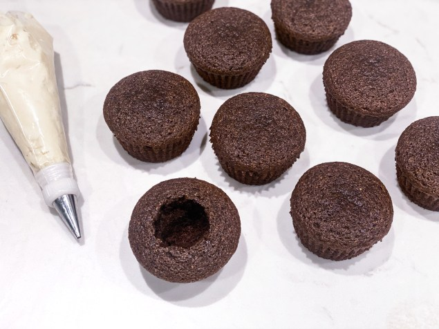 picture of chocolate cupcakes