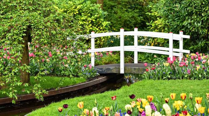 Here's 5 Tips for When You Create A New Flowerbed