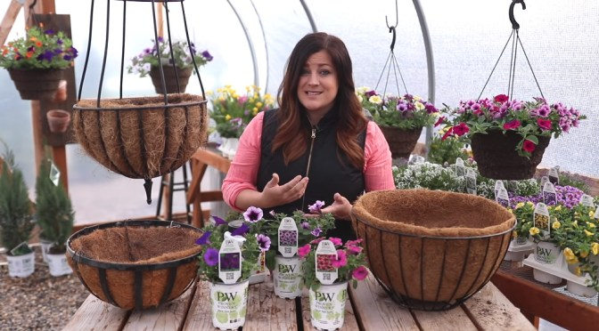Creating Hanging Baskets