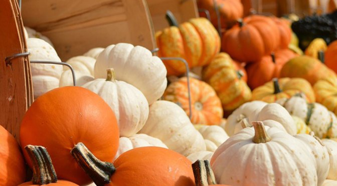 Fall Display Decorating Ideas