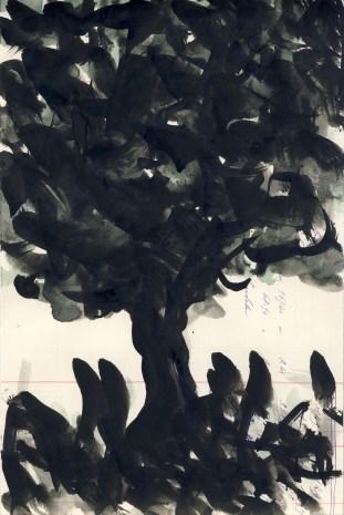 Graziella Reggio - 100 alberi, 2014