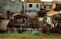 Graziella Reggio - Po, Gorino 2012