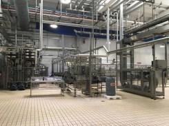 Vom Feld ins Glas - Hinter den Kulissen der Barilla Pesto-Herstellung