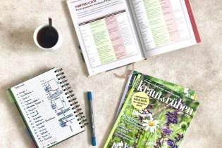Mein Gartenjahr 2019: Beetplanung, Mischkultur und Fruchtfolgen