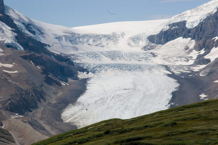 athabasca_glacier_from_a_ridge_near_wilcox_pass_28197692362929