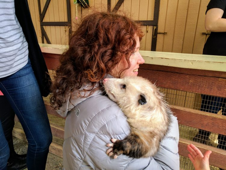 Hugging with an Opossum