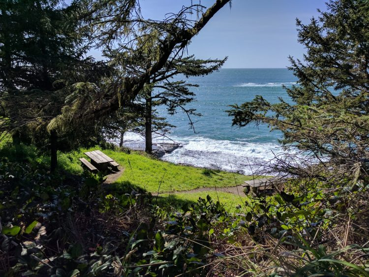 Picnic Table with a Mullion-Dollar View at Cape Arago State Park