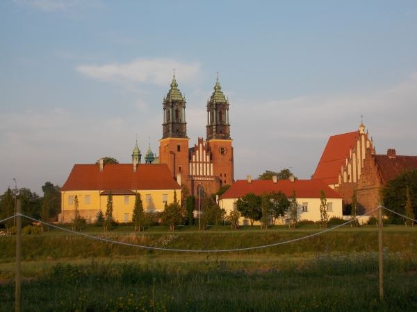 piknik katedra