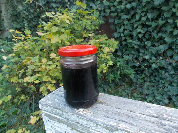 sok z czarnego bzu1
