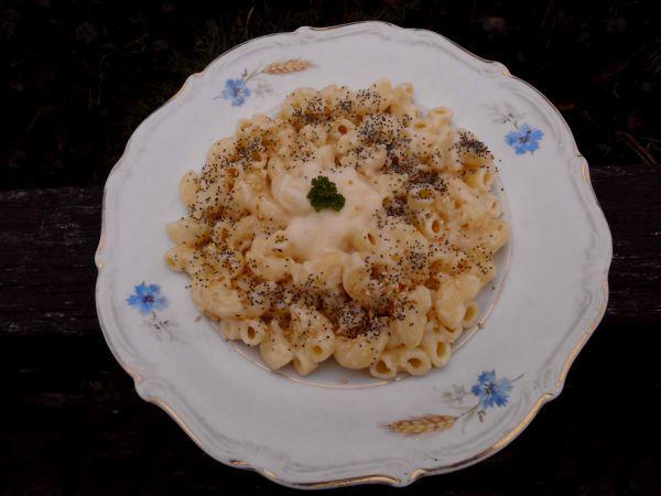 makaron w sosie serowym1