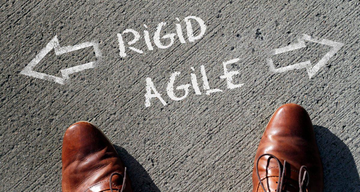 GRC Behemoth vs Agile GRC