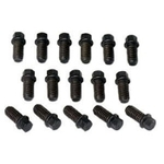 Moroso Header Bolt Kit