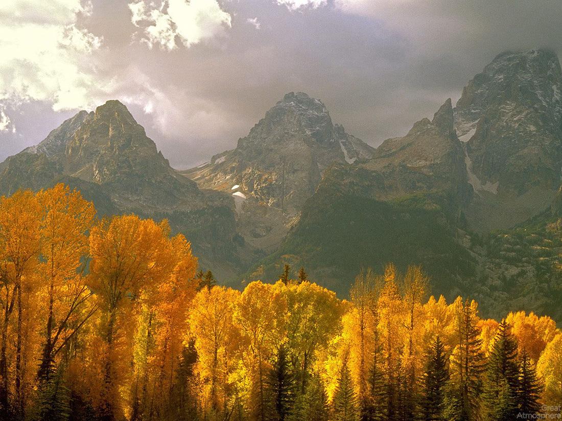 beautiful autumn landscape great