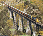 Train ride on our NZ biking holidays - Great Bike Tours