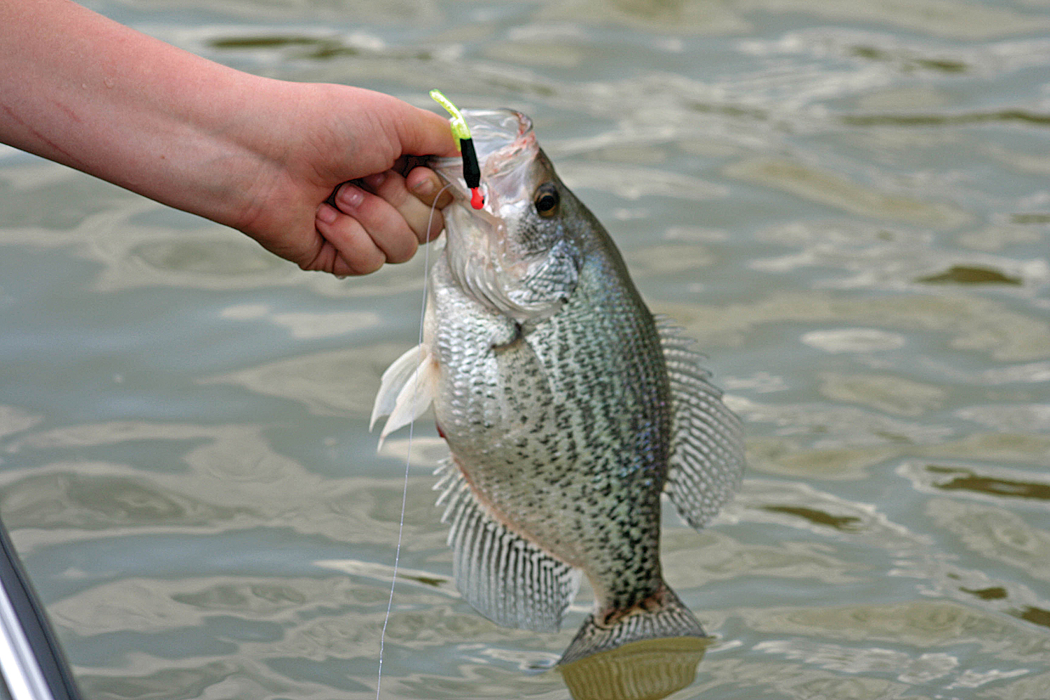 Secrets to January Crappie Fishing  Great Days Outdoors