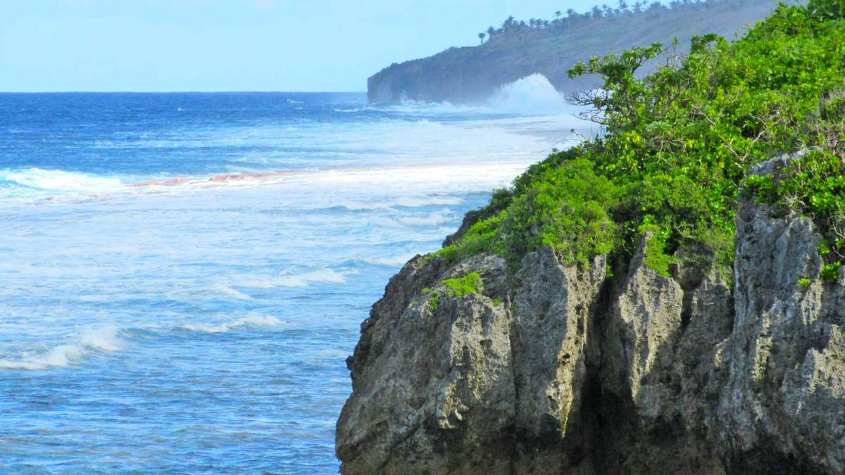 Niue-cliffs