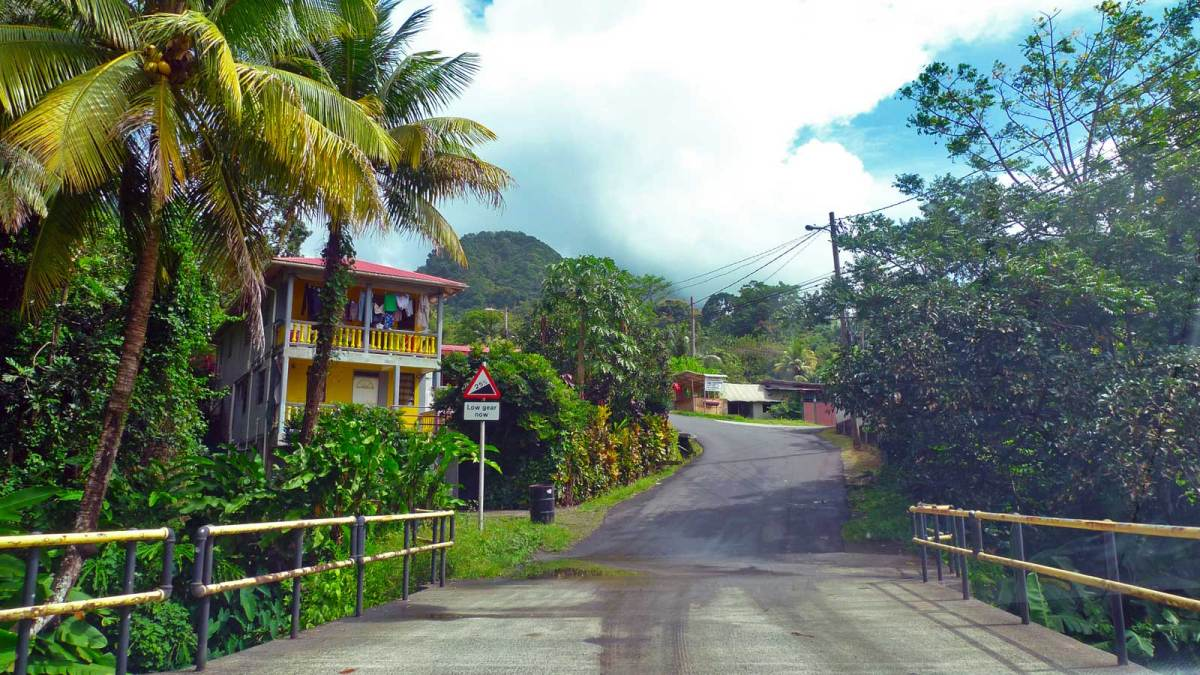 dominica_road-view-1