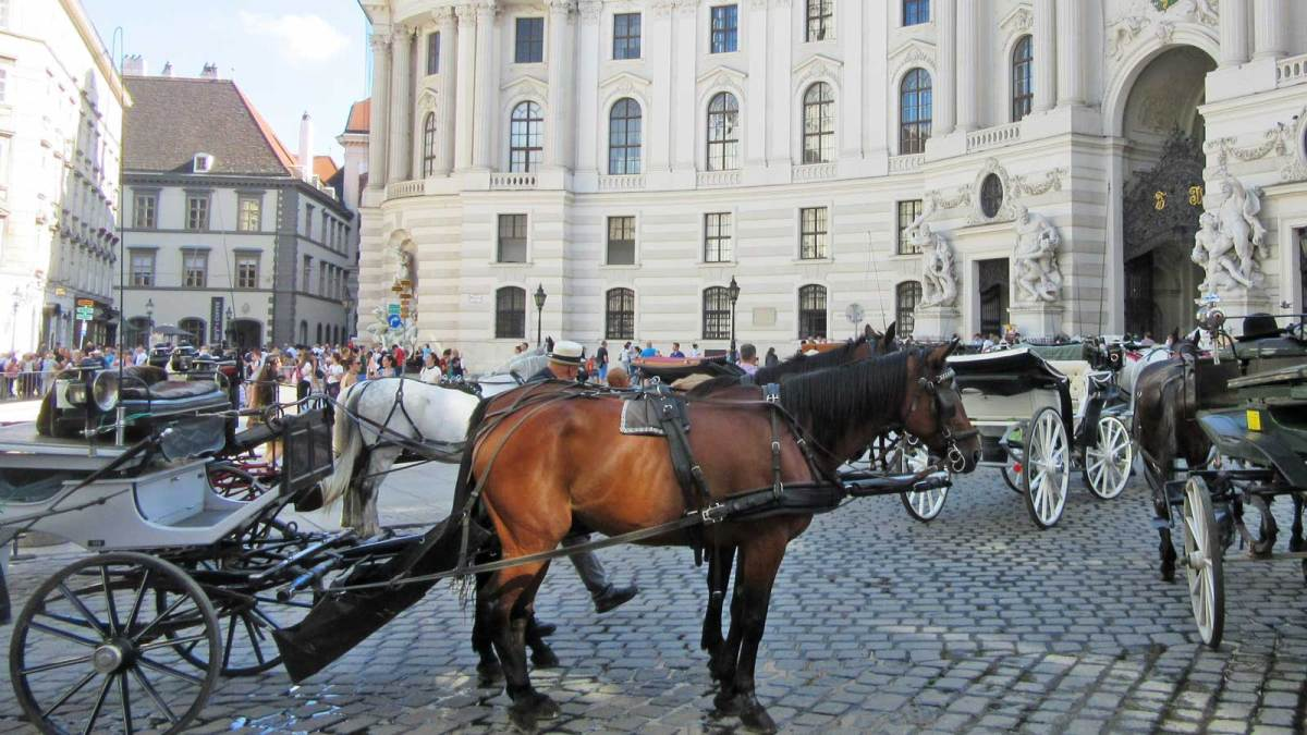 vienna_horse-carriages