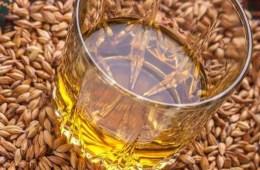 grainwhisky 1