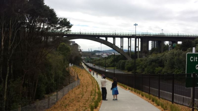 Grafton Gully Opening - Grafton Bridge