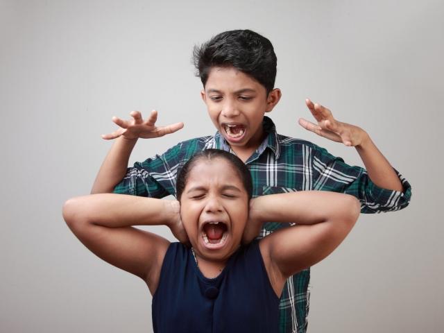 how to teach siblings