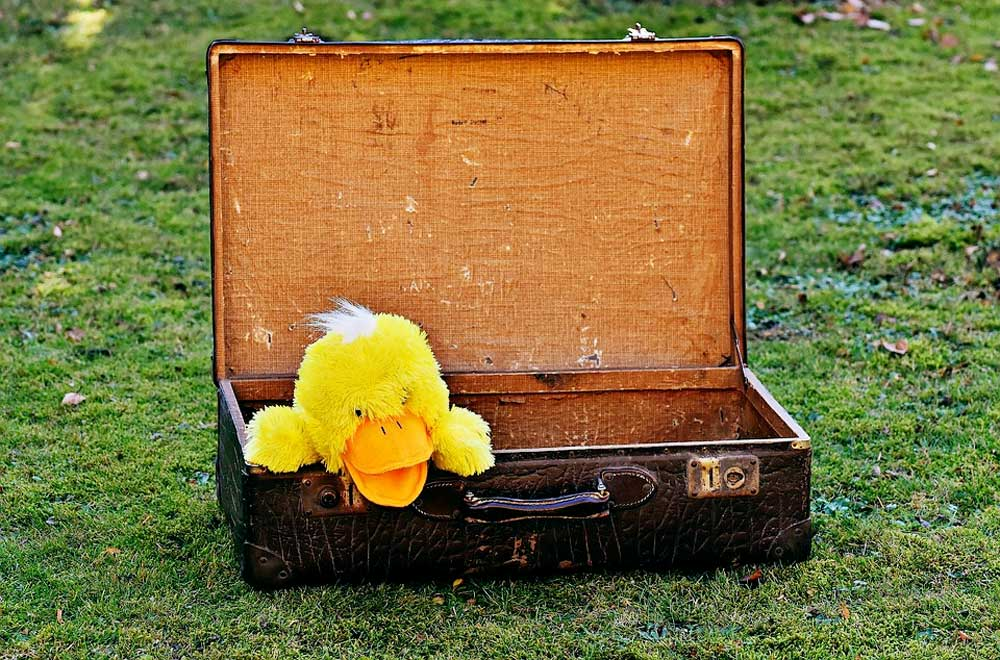 Stuffed yellow duck with a tuft of white hair in an open suitcase.