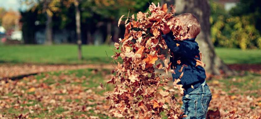 Kid in the Leaves