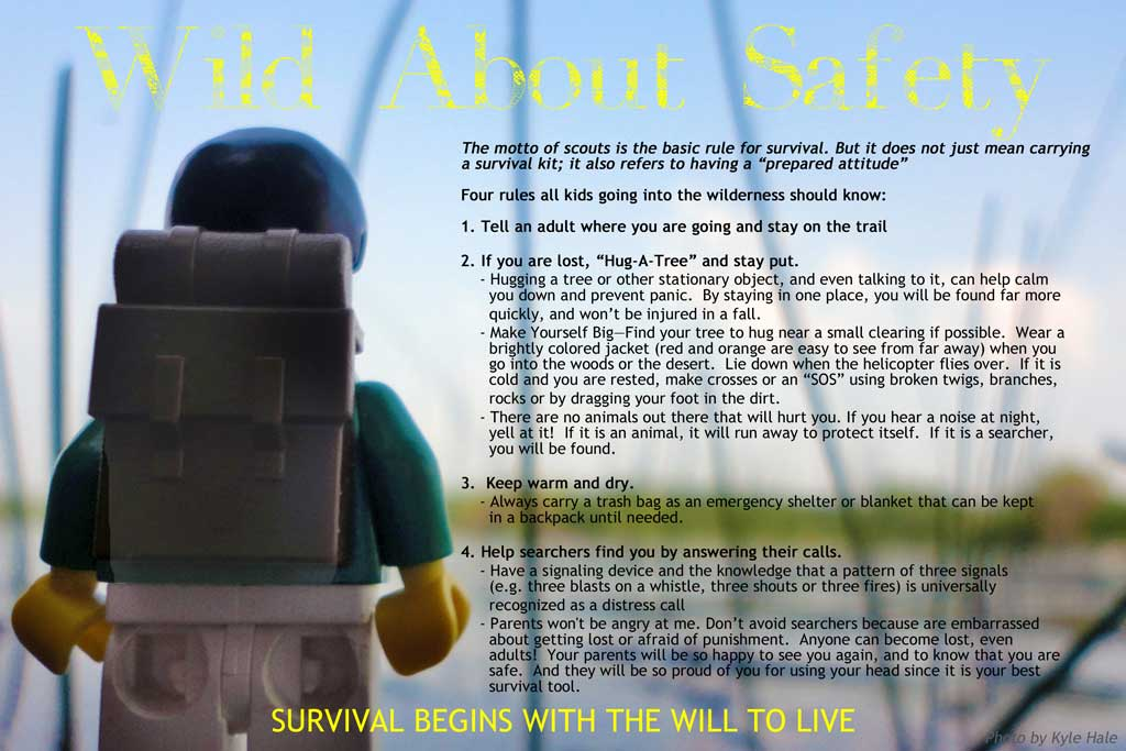 Wild About Safety Poster