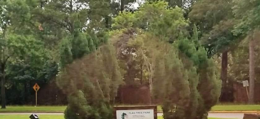 Flag Tree Park