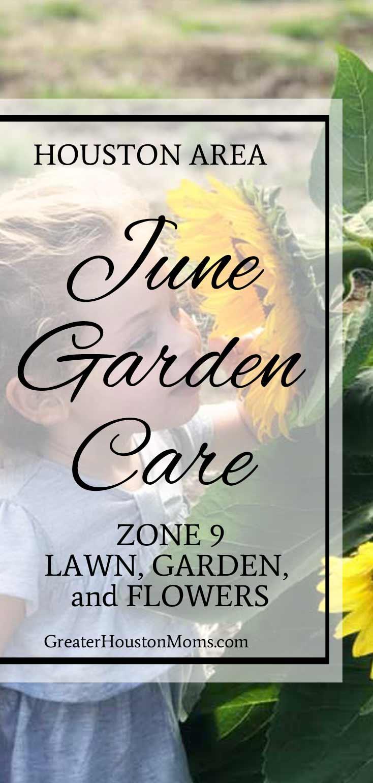 Houston June Garden Care
