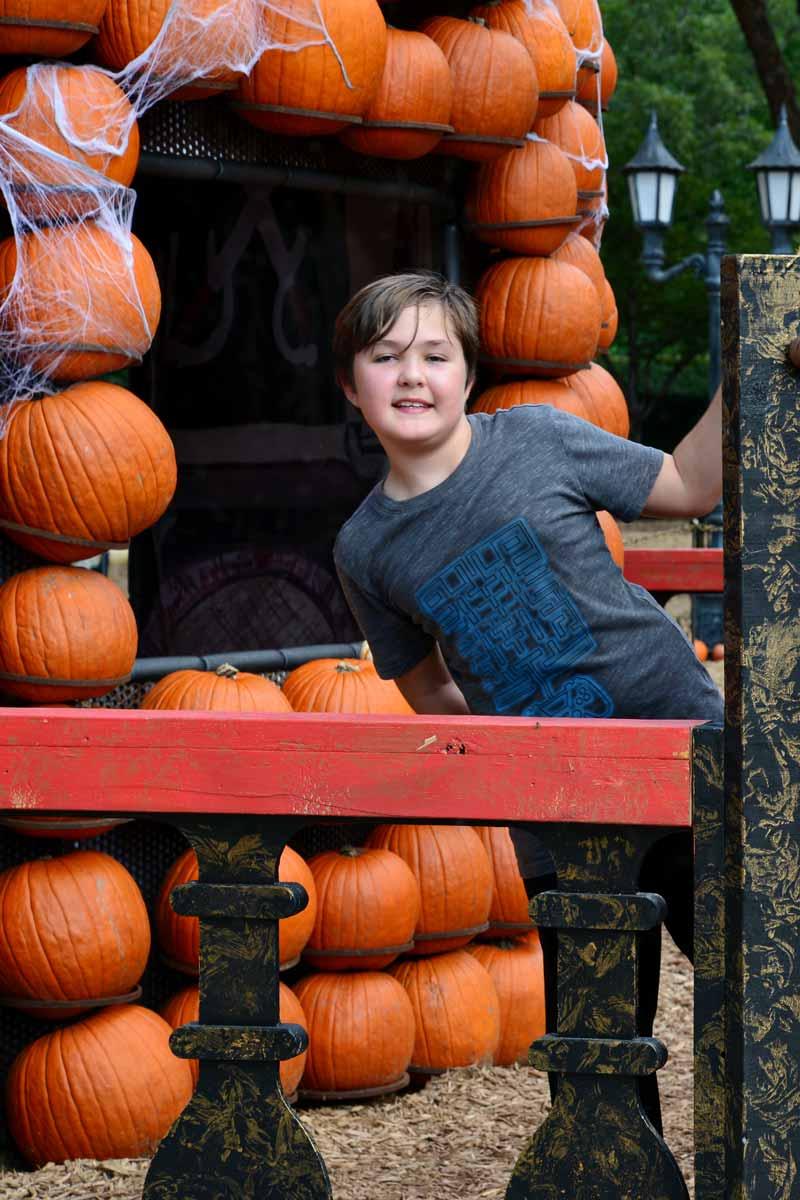 This-Week-in-Houston--- October 28 - November 3 Keller Botanical Gardens Halloween Pumpkin