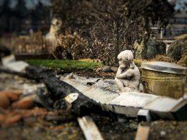 Almeda fire in southern Oregon