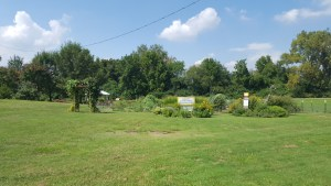 coldwater-commons-garden
