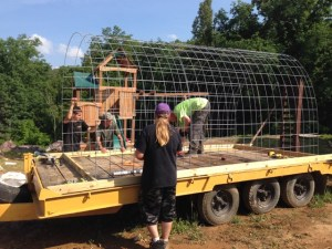 Greenhouse Design on the Cheap | Make Your Own for Around $200GreenHouse6
