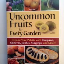 Uncommon Fruits Front