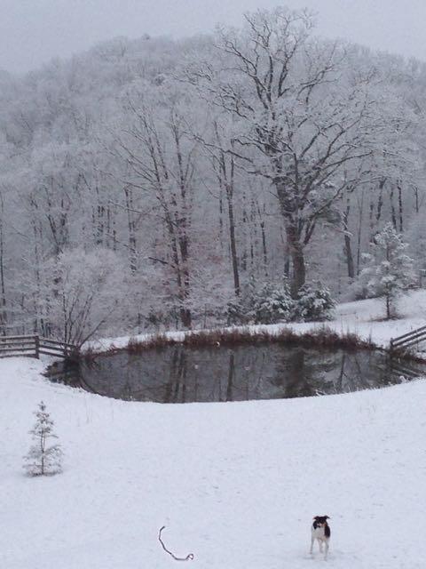 Crazy Weather -Warm Day -Snow Day- Warm Day