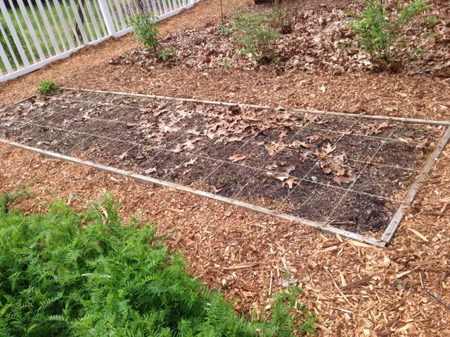 Square Foot Gardening and Drip Irrigation
