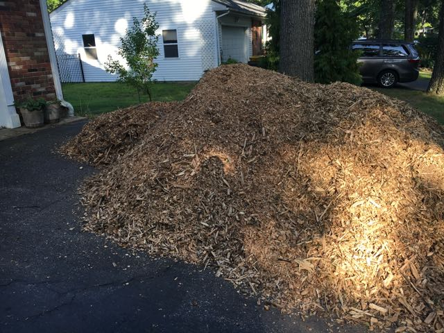 How to get Free Wood Mulch from Tree Trimmers