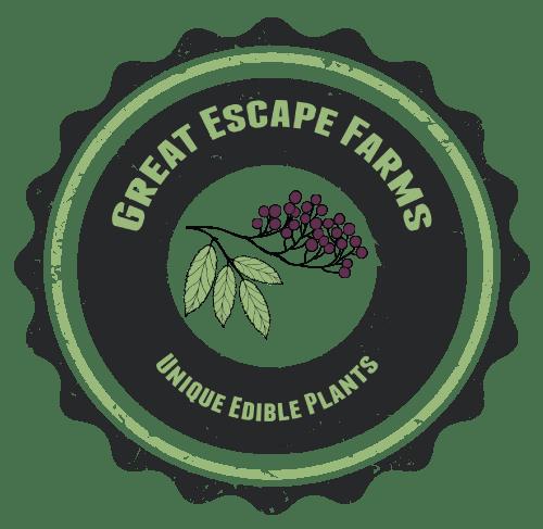 Great Escape Farms Launch