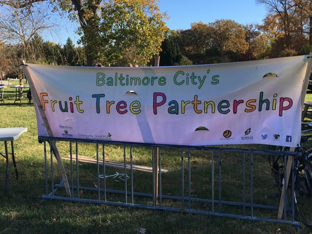 Baltimore City Fruit Tree Partnership Program