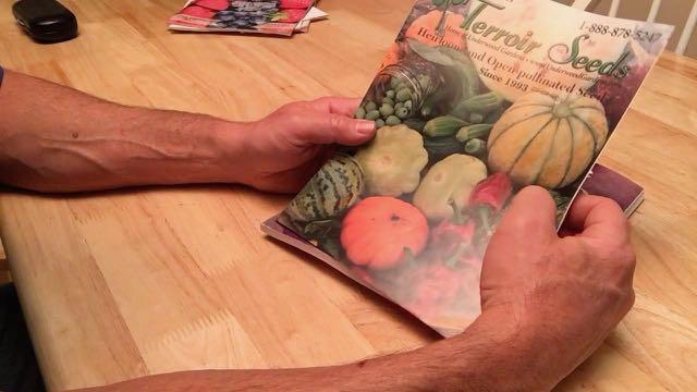 Terroir Seeds
