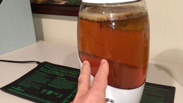 Sustainable Homesteading in Maryland Part 3 - Inside Projects - Kombucha