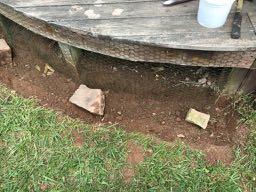 More Groundhog Repellent and Deterrent - Chicken Wire
