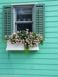 Seaside Turquoise Window