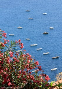 Pink flowers and boats in Positano